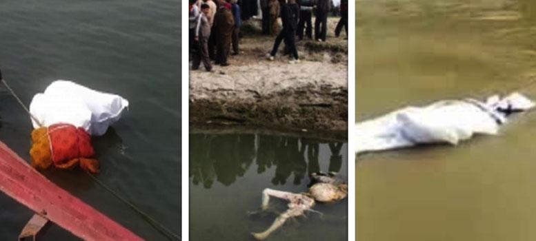 একের পর এক মৃতদেহ ভেসে আসছে নদীতে, আতঙ্ক এলাকায়